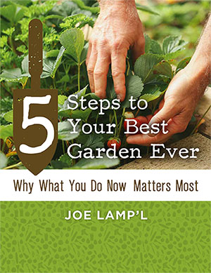 5 Steps to Your Best Garden Ever