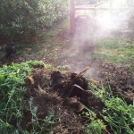Backyard Composting: A Simple Recipe for Making Great Compost