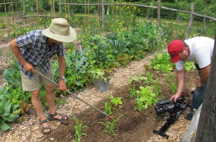 weedless organic gardening