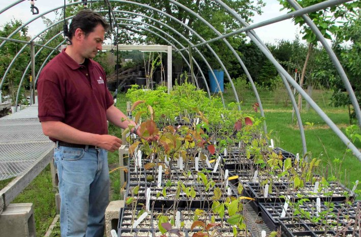 Dr. Jeff Gillman researches gardening advice