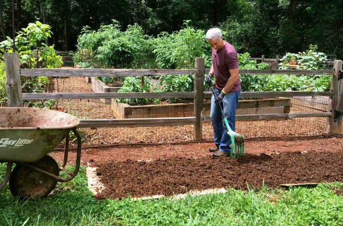 A layer of composted horse manure is added to the first layer of cardboard. The cardboard smothers the surface, while the manure and everything else will ...