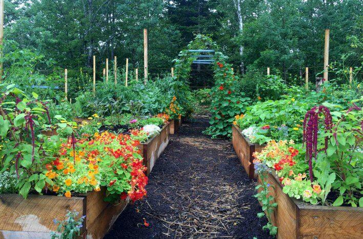 Year long gardening