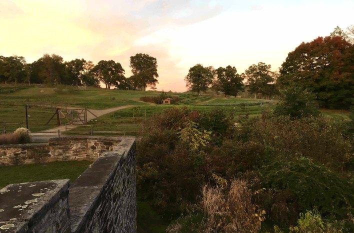 Blue Hill at Stone Barns farm field