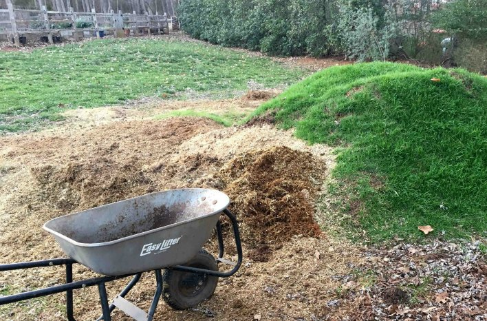 Composted horse manure containing persistent herbicide