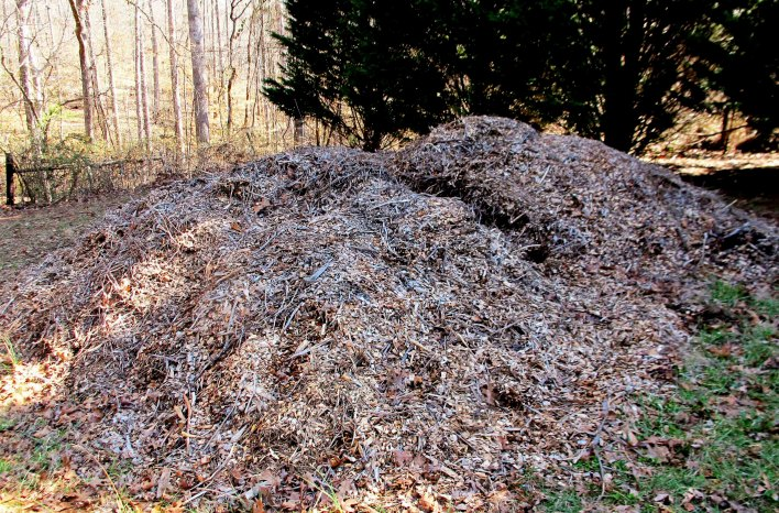 Arborist wood chips used for mulch
