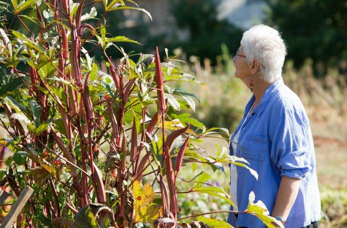 Sow True Seed founder Carol Koury
