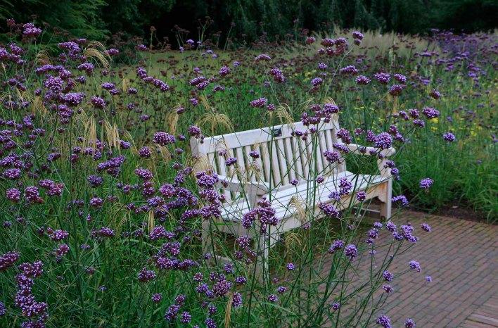 Small space garden design plants
