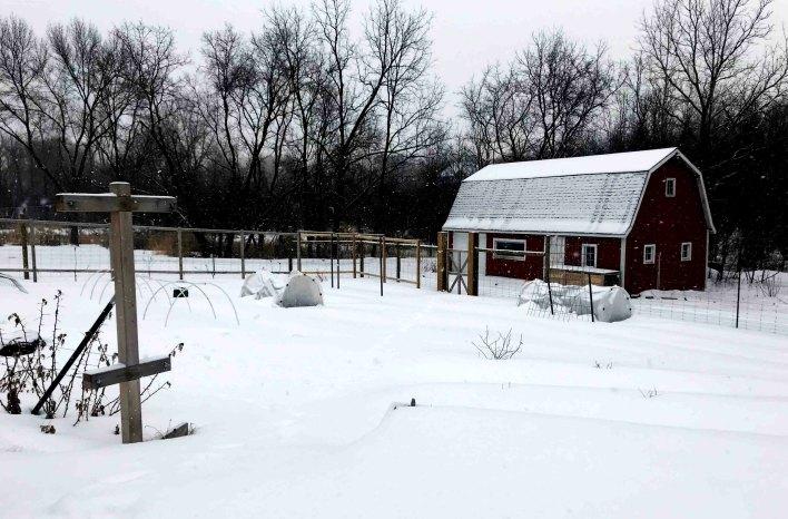 Cowden gardens in winter