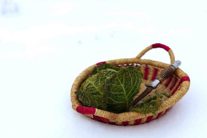 December vegetable harvest