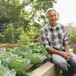 Top 5 Reasons to Garden in a Raised Bed
