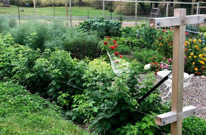 Cowden garden in early October