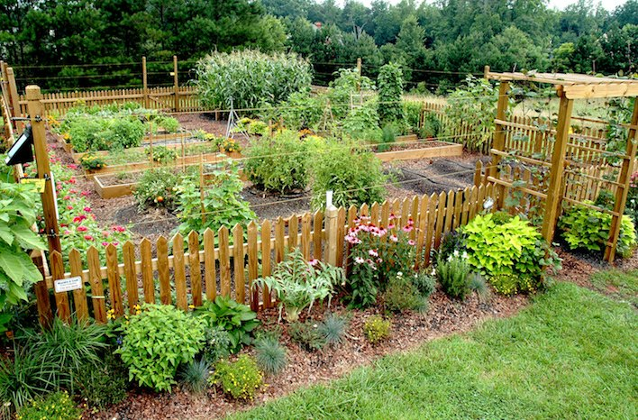 Raised bed plant orientation