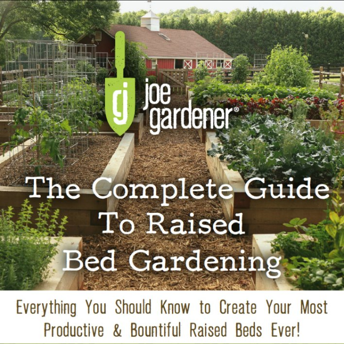 The Complete Guide to Raised Bed Gardening