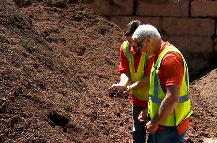 Inspecting topsoil.