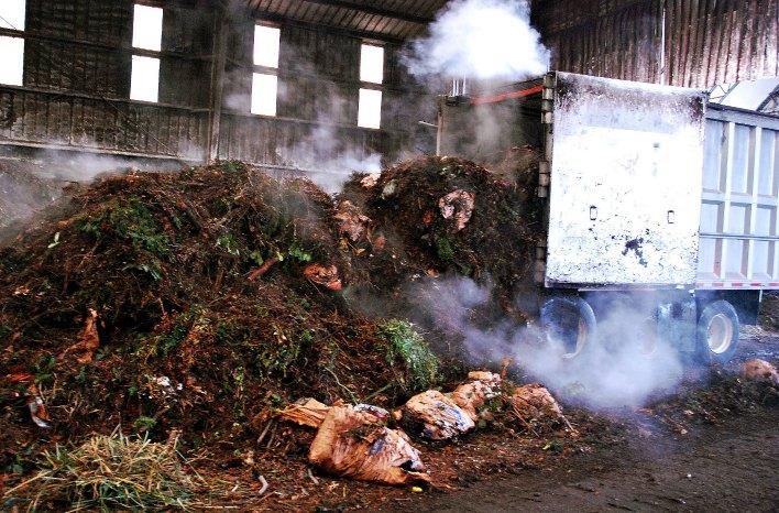 Raw compost materials