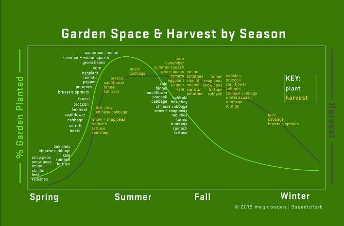 Meg Cowden garden chart