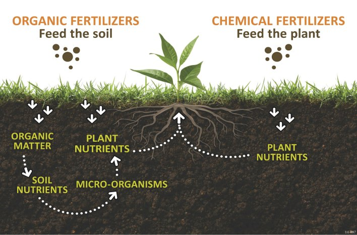 Fertilizer process illustration