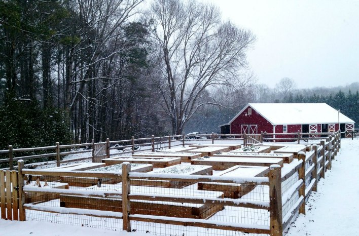 GardenFarm in snow