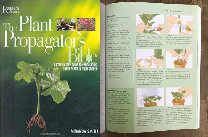 Plant Propagator's Bible book