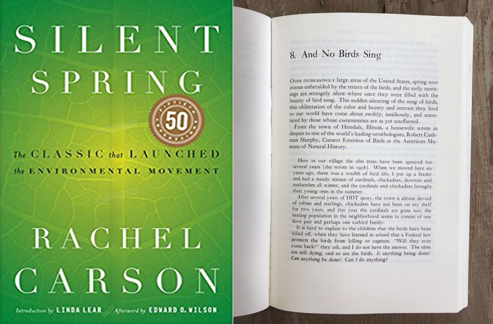Silent Spring - one of my favorite gardening books