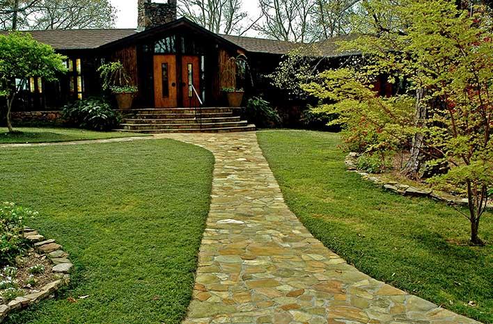 Mondo grass lawn