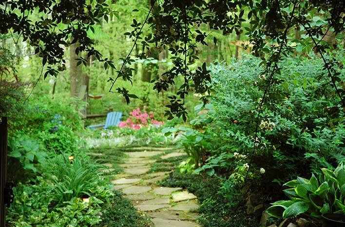 Urban garden beds
