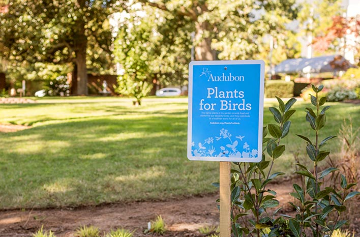 Audubon Plants for Birds sign