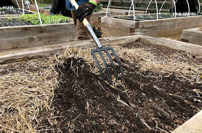 Composting at home - Mulch in raised beds
