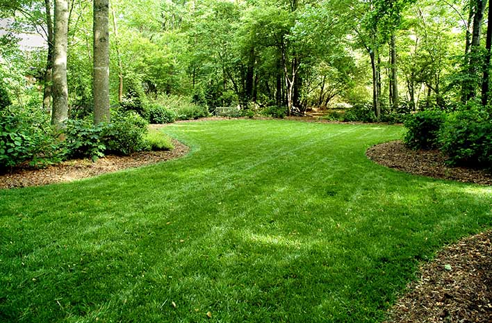Image result for 7 Ways to Make Your Lawn Pleasingly Lush This 2019