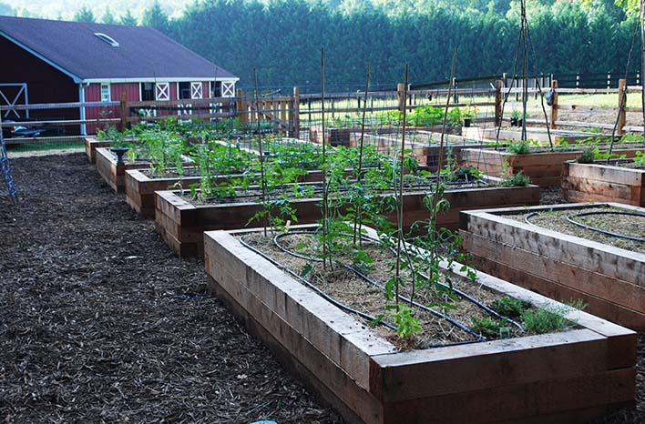 GardenFarm