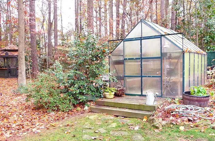 Greenhouse of Sheri George