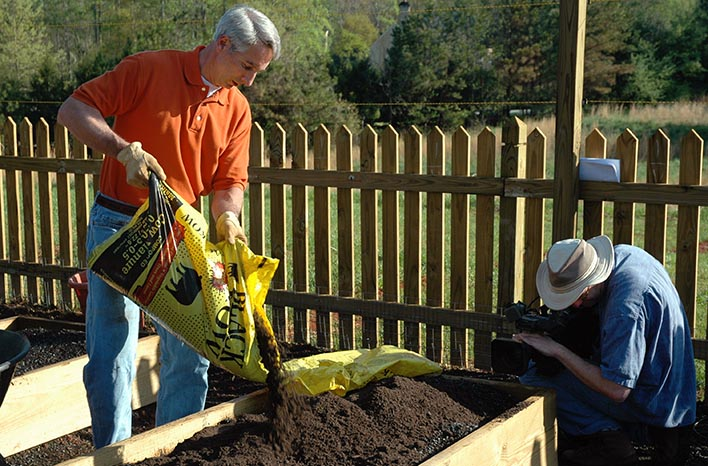 adding composted cow manure to raised bed soil