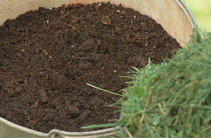 grass clippings and compost