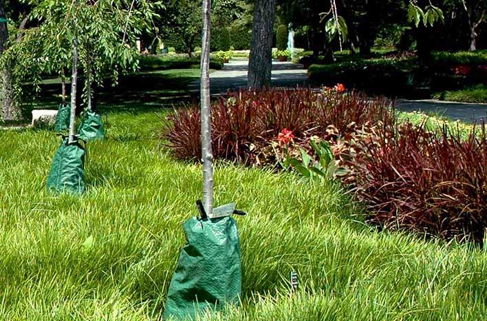 drip irrigation bags
