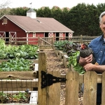 The Benefits of Backyard Chickens to Your Compost