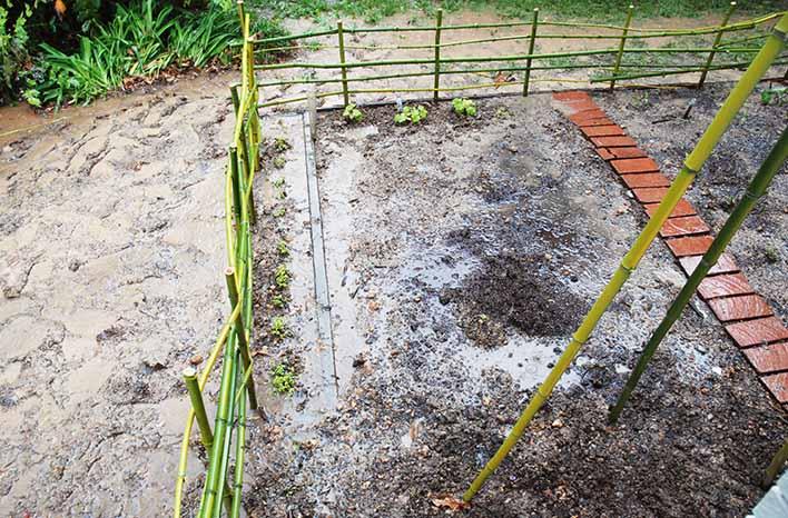 water-logged garden