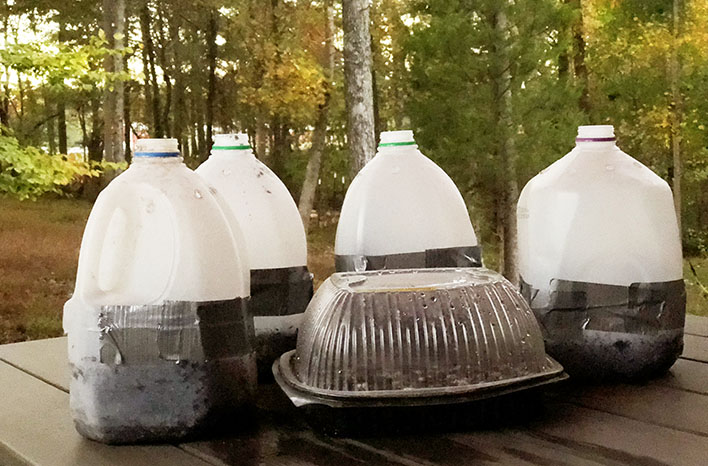 milk jugs and food containers used for winter sowing