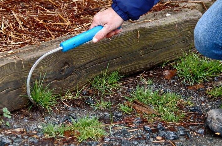 cobrahead hand weeding tool