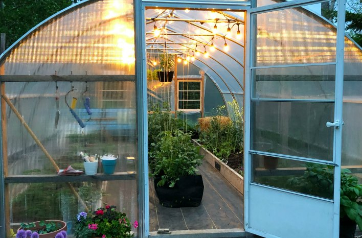 niki jabbour's poly-tunnel