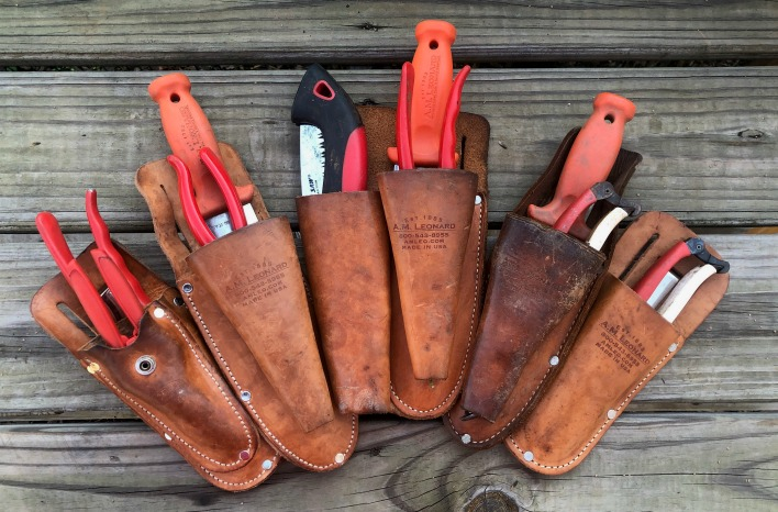 a selection of pruning sheaths