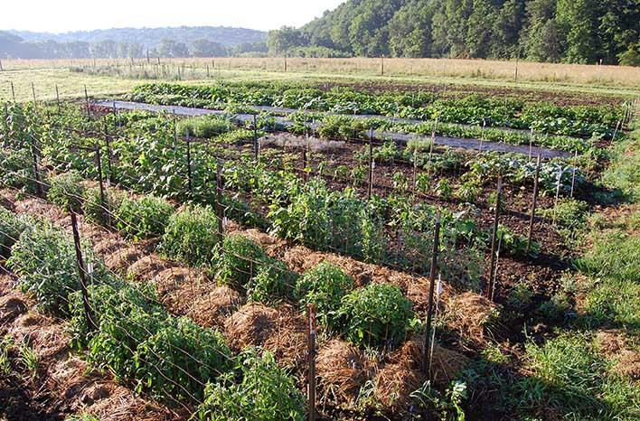 Seed Savers Exchange Heritage Farms