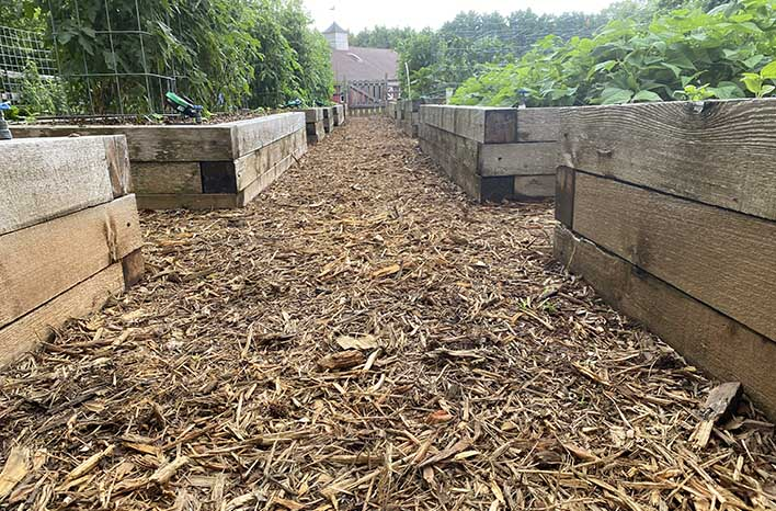 gardening pet peeve mulch