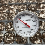 The Best Soil Temperature for Seed Germination