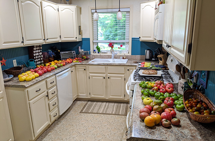 Kitchen counters full of tomatoes