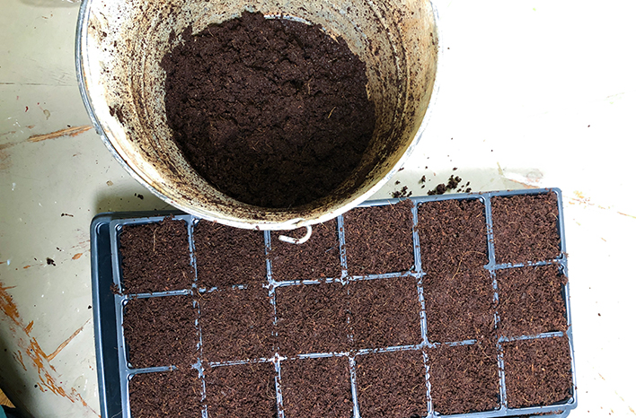 Seed starting mix in a bucket