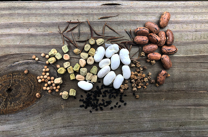 Assortment of seeds