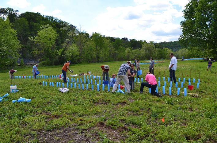 Seven Islands Volunteer Planting
