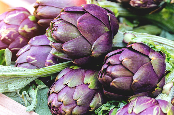 Heads of purple artichoke