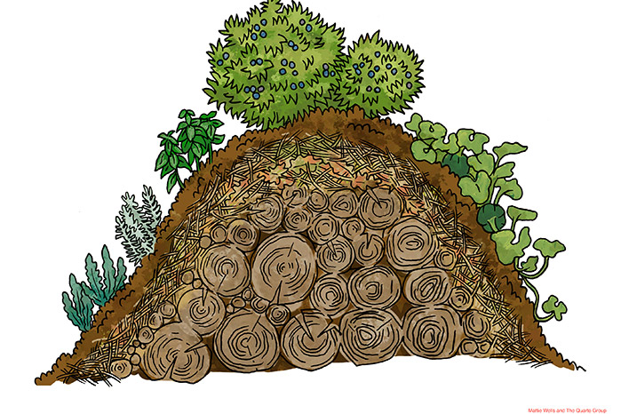 Hugelkultur gardening is a method of growing on mounds of logs and twigs covered in other organic materials. Annual crops, berries and even trees can grow on the mounds.