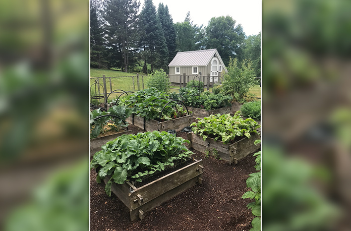 A raised bed garden is an example of no-dig gardening.